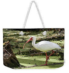 Weekender Tote Bag featuring the photograph White Ibis by Gary Wightman
