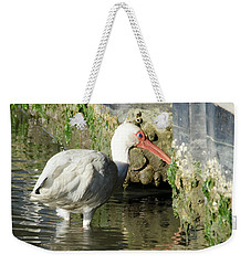 Weekender Tote Bag featuring the photograph White Ibis Headed Home by George Randy Bass