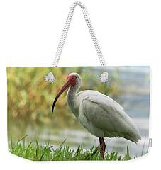 White Ibis On The Florida Shore  Weekender Tote Bag by Saija Lehtonen