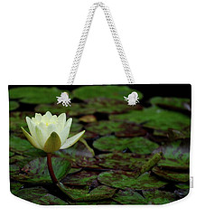 Weekender Tote Bag featuring the photograph White Lily In The Pond by Amee Cave