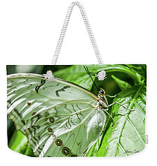 Weekender Tote Bag featuring the photograph White Morpho Butterfly by Joann Copeland-Paul