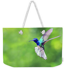 White Necked Jacobin Hummingbird Weekender Tote Bag