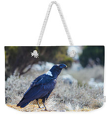 White-necked Raven Camping Out On Kilimanjaro Weekender Tote Bag by Jeff at JSJ Photography