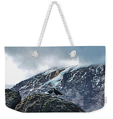 White-necked Raven Pair Under Kilimanjaro Summit Glacier Weekender Tote Bag by Jeff at JSJ Photography