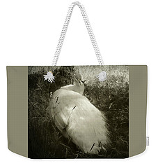 Weekender Tote Bag featuring the photograph White Peacock Lounging In The Shade by Katie Wing Vigil