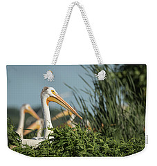 Weekender Tote Bag featuring the photograph White Pelican 7-2015 by Thomas Young