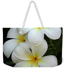 White Plumeria Weekender Tote Bag