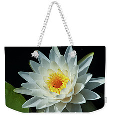 White Pond Lily Weekender Tote Bag