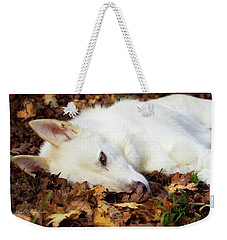 White Shepherd Rests In Autumn Leaves Weekender Tote Bag