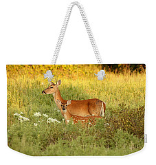 White-tail Doe And Fawn In Meadow Weekender Tote Bag