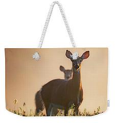 White-tailed Deer 2016 Weekender Tote Bag