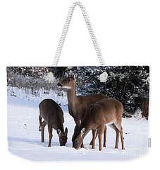 White-tailed Deer - 8855 Weekender Tote Bag