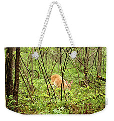 Weekender Tote Bag featuring the photograph White-tailed Deer In A Misty, Pennsylvania Forest by A Gurmankin