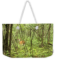 Weekender Tote Bag featuring the photograph White-tailed Deer In A Pennsylvania Forest by A Gurmankin