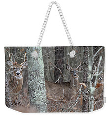White Tailed Deer Smithtown New York Weekender Tote Bag