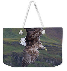 White-tailed Eagle Banks Weekender Tote Bag