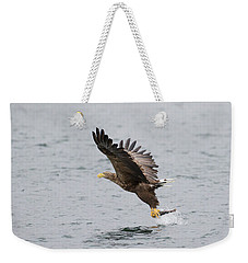 White-tailed Eagle Catching Dinner Weekender Tote Bag