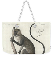 White Throated Guenon, Cercopithecus Albogularis Erythrarchus Weekender Tote Bag