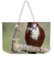 White-throated Kingfisher 01 Weekender Tote Bag