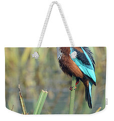 White-throated Kingfisher 13 Weekender Tote Bag