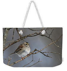 Weekender Tote Bag featuring the photograph White-throated Sparrow by Living Color Photography Lorraine Lynch