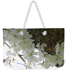 Weekender Tote Bag featuring the photograph Dogwood Branch by Melinda Blackman