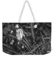 Weekender Tote Bag featuring the photograph White Tulip June 2016 Bw.  by Leif Sohlman