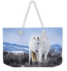 White Wild Horse Mystic Of Sand Wash Basin Weekender Tote Bag