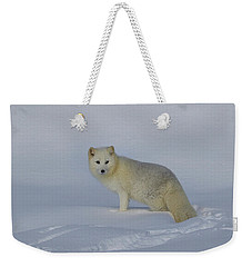 White Wilderness Weekender Tote Bag