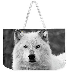 White Wolf Encounter Weekender Tote Bag
