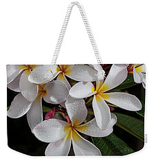 White/yellow Plumerias In Bloom Weekender Tote Bag