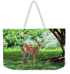 Whited-tailed Fawn - Face Of Innocence 2 Weekender Tote Bag by Ella Kaye Dickey