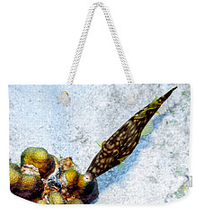 Weekender Tote Bag featuring the photograph Whitespotted Filefish by Perla Copernik