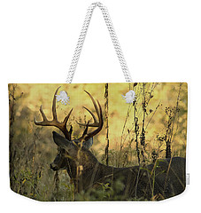 Whitetail Buck At Sunrise Weekender Tote Bag