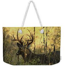 Whitetail Buck At Sunrise Weekender Tote Bag by TnBackroadsPhotos