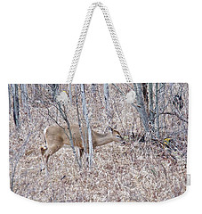 Weekender Tote Bag featuring the photograph Whitetail Deer 1171 by Michael Peychich