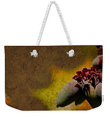 Who Knows Weekender Tote Bag by Trish Tritz