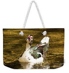 Who Me Wildlife Art By Kaylyn Franks Weekender Tote Bag