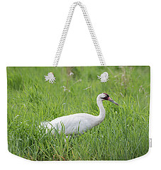 Whooping Crane 2017-2 Weekender Tote Bag by Thomas Young