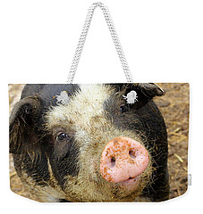 Weekender Tote Bag featuring the photograph Wilbur by Viviana  Nadowski
