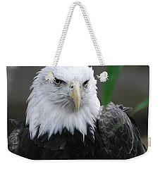 Wild Bald Eagle Bird Weekender Tote Bag by DejaVu Designs