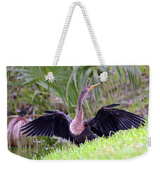 Weekender Tote Bag featuring the photograph Wild Birds - Anhinga by Kerri Farley