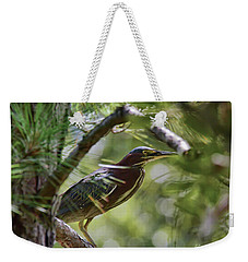 Weekender Tote Bag featuring the photograph Wild Birds - Green Heron Tries To Hide by Kerri Farley