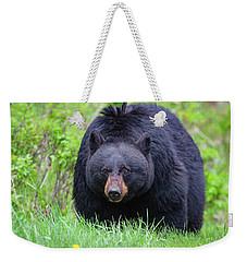 Wild Black Bear Weekender Tote Bag