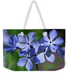 Weekender Tote Bag featuring the photograph Wild Blue Phlox Dspf0386 by Gerry Gantt