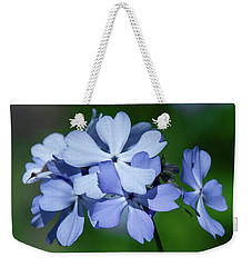 Weekender Tote Bag featuring the photograph Wild Blue Phlox Dspf0387 by Gerry Gantt