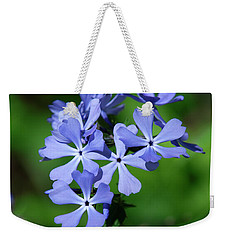 Weekender Tote Bag featuring the photograph Wild Blue Phlox Dspf0388 by Gerry Gantt