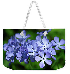 Weekender Tote Bag featuring the photograph Wild Blue Phlox Dspf0391 by Gerry Gantt