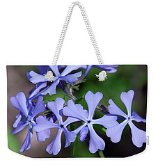 Weekender Tote Bag featuring the photograph Wild Blue Phlox Dspf0392 by Gerry Gantt
