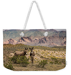 Weekender Tote Bag featuring the photograph Wild Burros At Lake Mead by Janis Knight